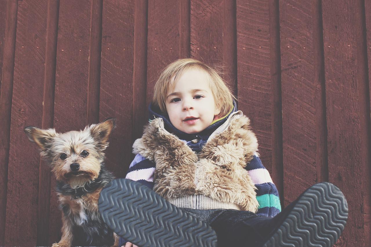 Netzwerken, Kind ,Haustier, Networking, Netzwerken lernen