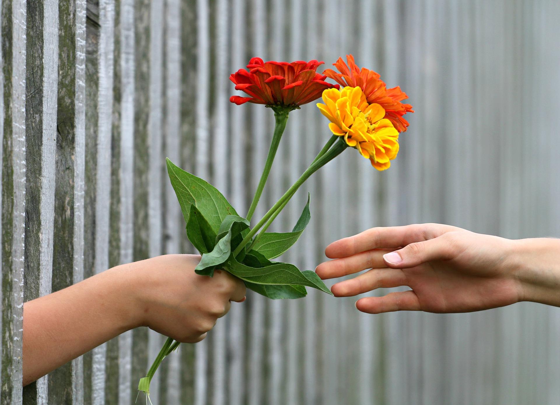 geben, nehmen, geschenk, netzwerken, smalltalk